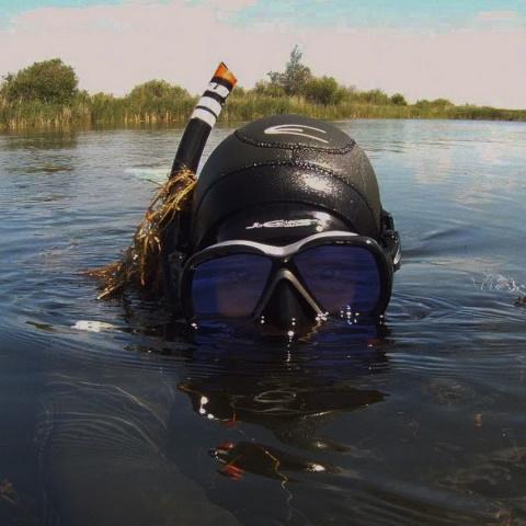 Случай на подводной охоте