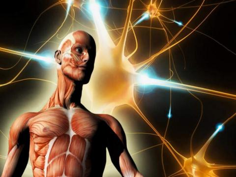 Как понять, что Ваш организм зашлакован
