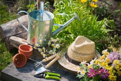 10 заповедей садовника, думающего об экологии