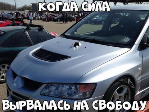 Автовсячина  (30 фото)