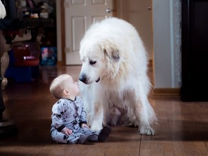 20 фотографии детей с животн…