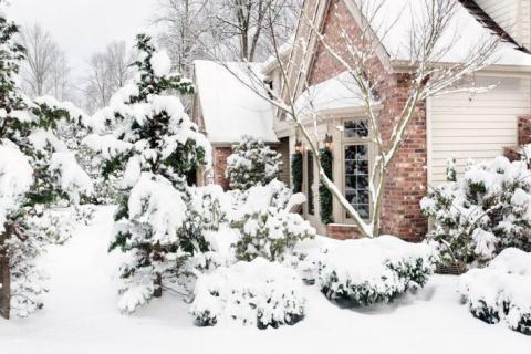 Снег, держись!