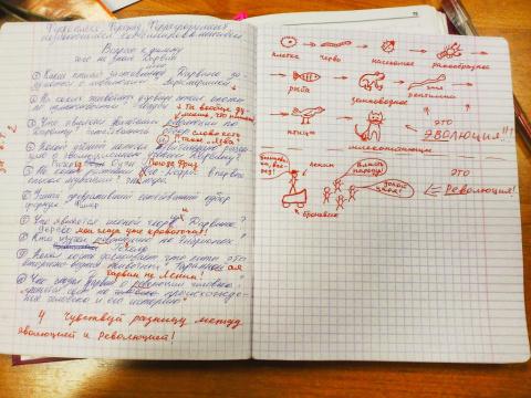 Шикарное объяснение учителя)))