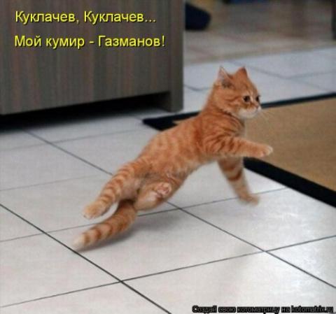 Новая котоматрица для хороше…