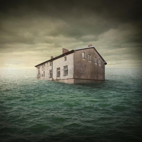 Дожди влили в озеро Тахо око…