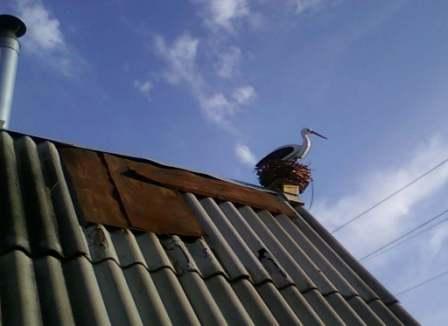 Аист на крышу поделки для дачи, как чем украсить дачу, очумелые ручки, поделки из бросового материала,