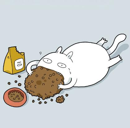 Типы котов в картинках. А у …