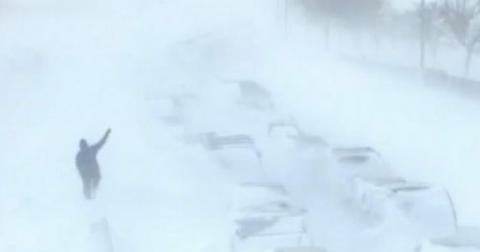 Снегопад повалил почти 60 деревьев в Нижнем Новгороде