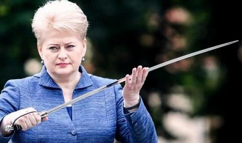 Президент Литвы: вборьбе с…
