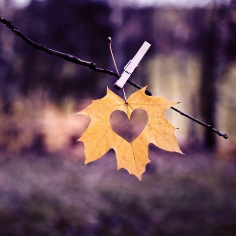 Сохраните и читайте всякий раз, когда будет плохое настроение: помни, для кого-то ты значишь всё!