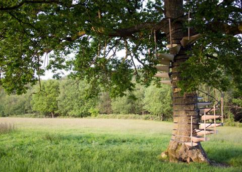 Винтовая лестница, устанавливающаяся на дерево без инструментов
