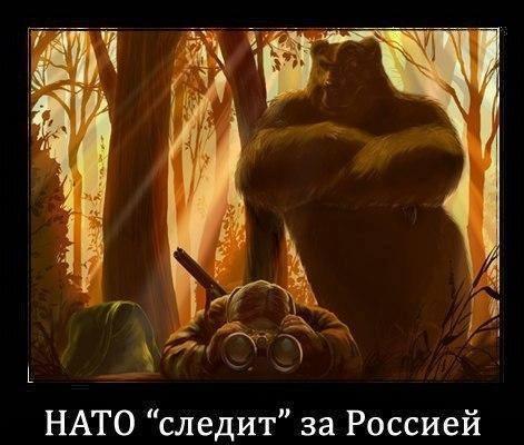 Андрей Шастов
