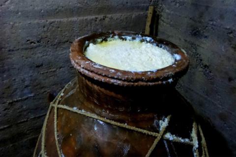 Старейший сорт сыра может на…
