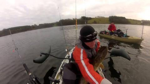 Рыбалка была бы удачной, если только не...