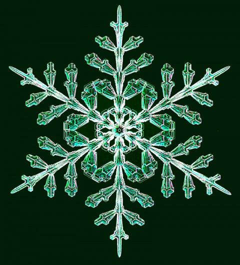 Фото: уникальные снежинки из…