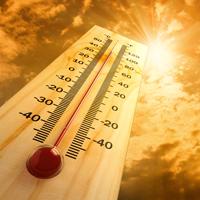 Необычная жара в Австралии: …
