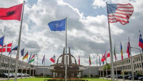 Опрос: ряд стран НАТО готов нарушить основной принцип альянса
