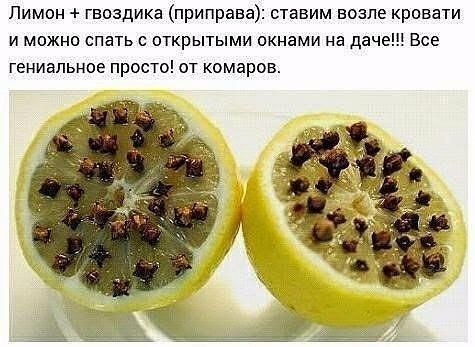 Все гениальное просто!( от комаров)