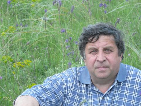 Александр Крыловецкий