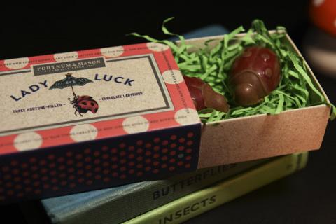 Шоколадка в коробчонке