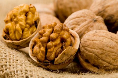 Грецкие орехи замедляют рост раковых клеток