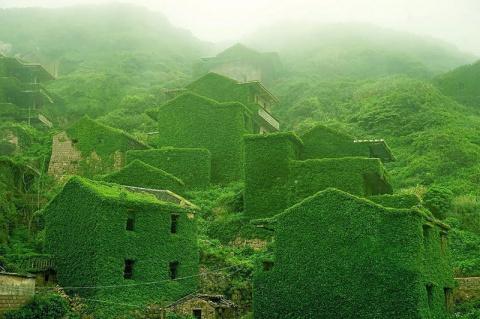 Жутко? Красиво! Жадный лес проглотил заброшенный китайский городок
