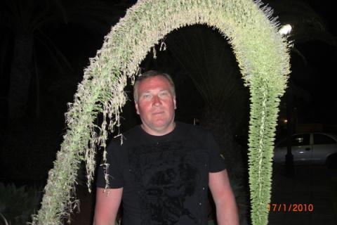 andrei mazurov