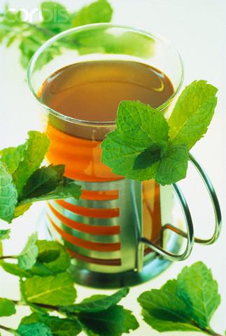 Лечебные чаи из веточек деревьев