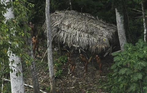 Неконтактные индейцы Амазонии