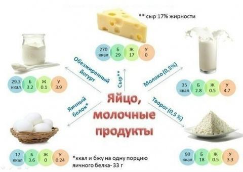 Лучшие источники белков, жир…