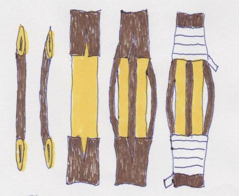 Как вылечить штамбы: мостики спасают дерево