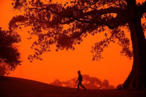 «Марсианские бури» Сиднея