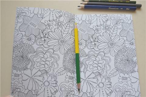 10 поводов взять в руки цветные карандаши взрослым занятым людям