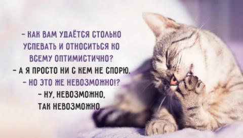 Искусство ведения спора)