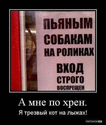 Серега Рыков