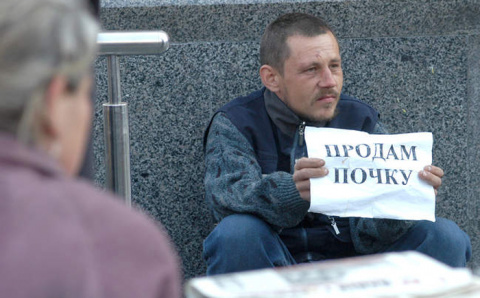 "Украина станет ""фабрикой орг…"
