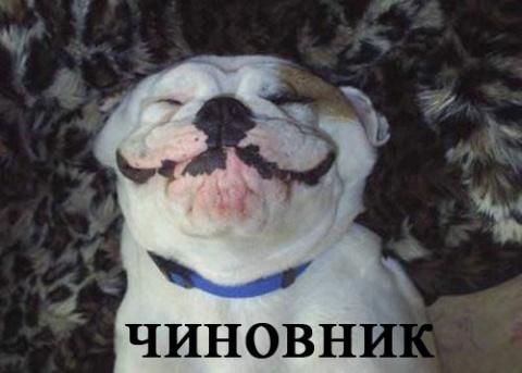 Radjik50 Правдивая