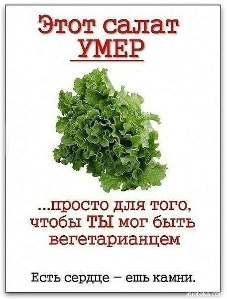 """""""Исторические факты от вегет…"""