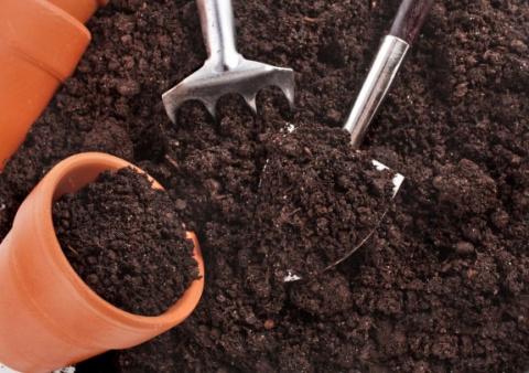 Подготовка к выращиванию рассады: готовим грунт