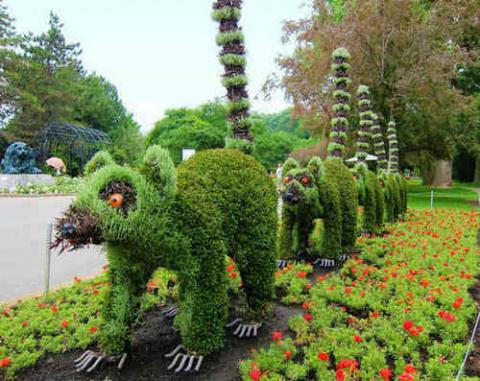 Топиарные фигуры для сада