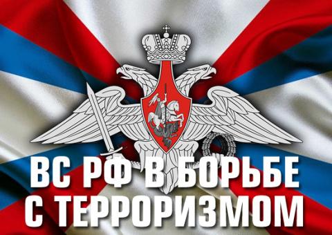 ВС РФ в борьбе с международн…