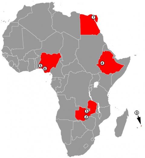 Почему Китай оказывает большое внимание африканскому континенту?