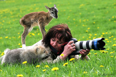 33 причины, почему фотограф …