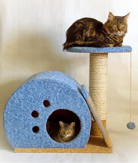 Мини-комплекс для кошек свои…