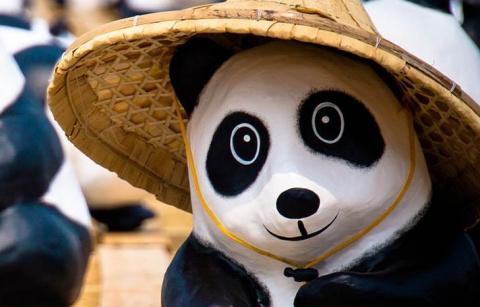 Как кошка и игрушечная панда выставили меня сумасшедшим перед женой