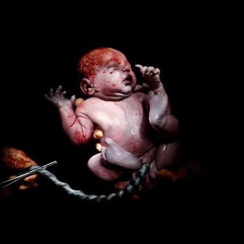 Чудо рождения: фотограф дела…