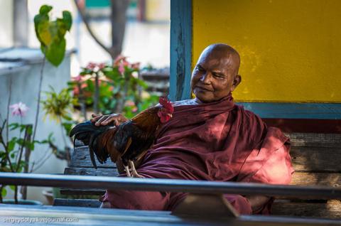 Как живут бирманские монахи