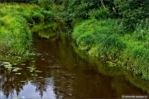 Образ маленькой реки в фото