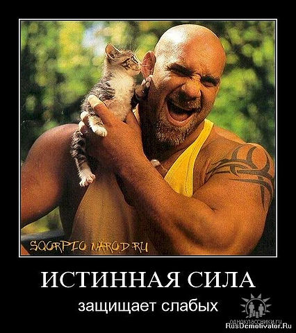 http://mtdata.ru/u24/photo2868/20019920677-0/big.jpeg
