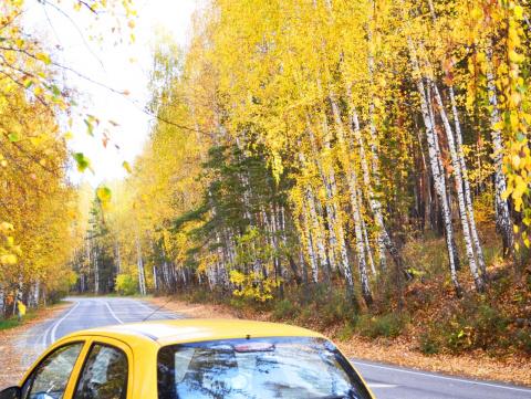 Ах, осень, осень, ты - мой милый гений, Явилась вновь в красе своих одежд..